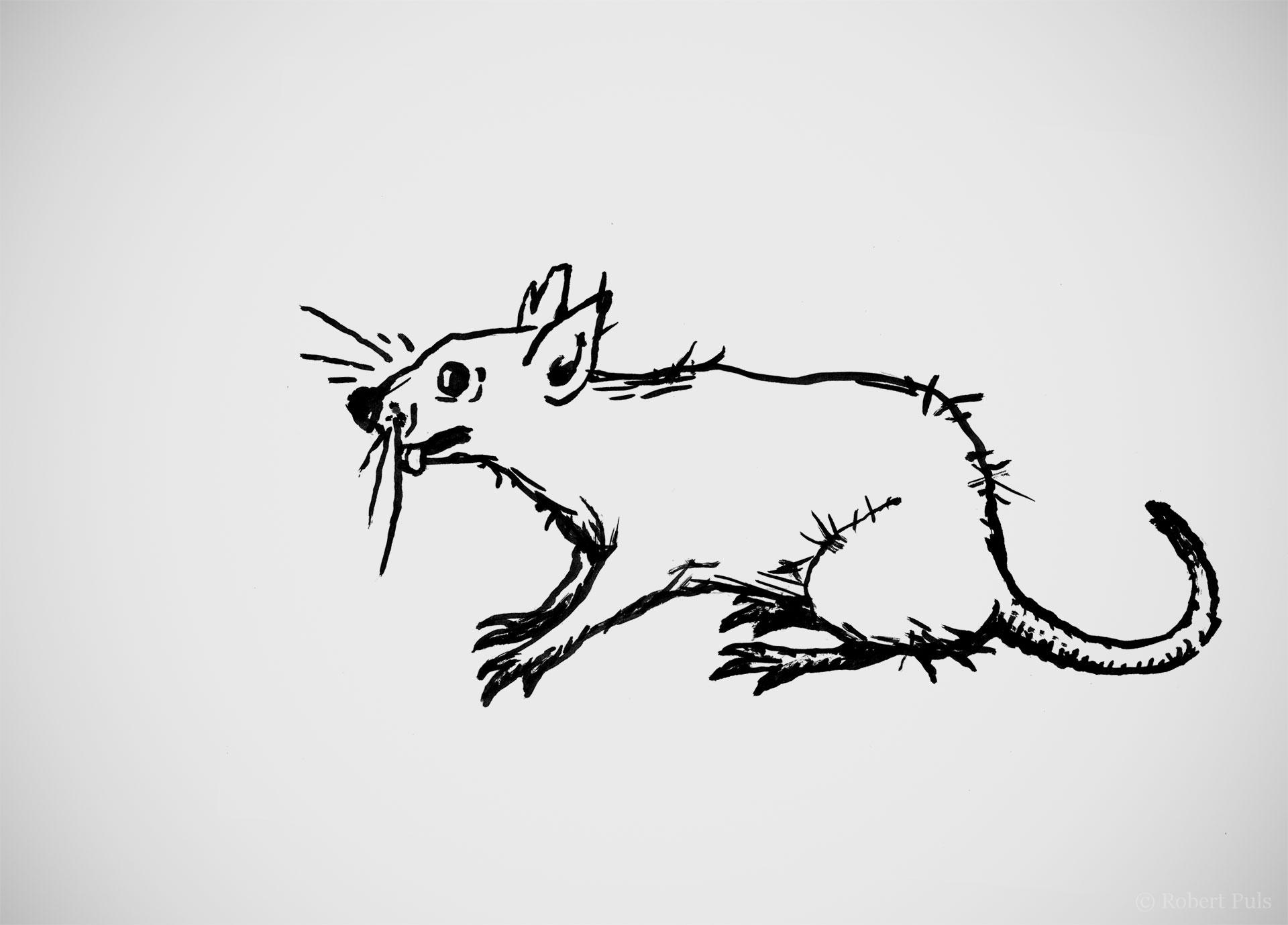 Ratte Illustration