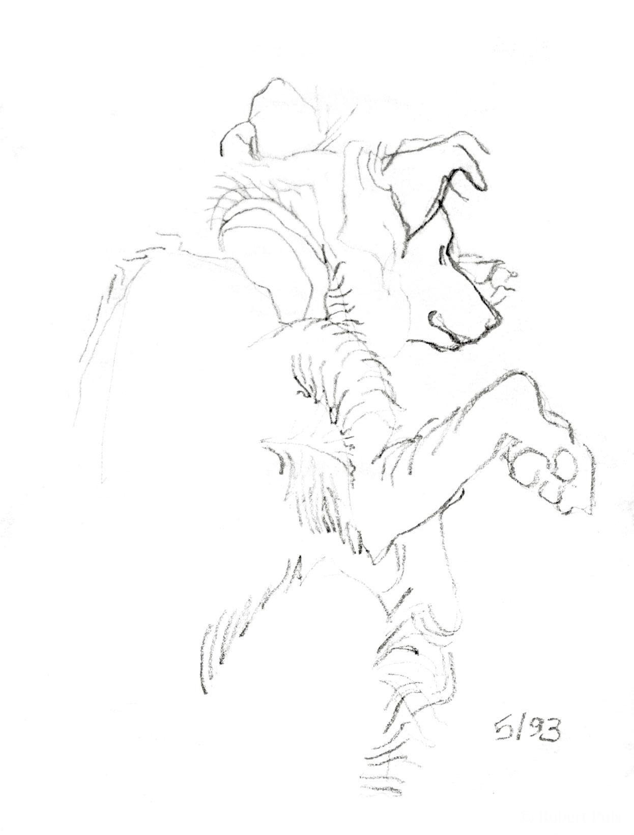 Schlafender Hund, Bleistift-Zeichnung Robert Puls